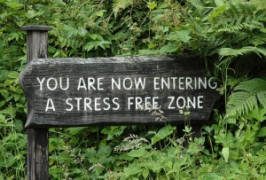 Are You Living a Stress Free Life?