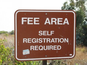 Why is the Term Fee-Only So Important?